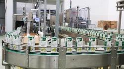 Hậu Covid-19, doanh nghiệp ngành mía đường làm loại nước mía có một không hai