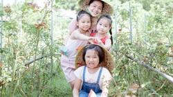 """Thái Nguyên: Cô giáo bỏ nghề """"trồng người"""", về quê trồng """"rừng"""" hoa hồng trong mơ"""