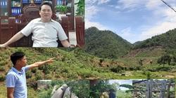 """Phú Thọ: Đi tìm nguyên nhân hơn 1.000ha rừng tự nhiên """"biến mất"""""""