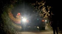 Bắc Kạn: Tạm giữ xe gỗ không rõ nguồn gốc trong đêm