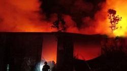 Hà Nội: Cháy lớn tại khu quy hoạch rừng huyện Thanh Trì