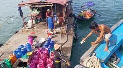 Cá to cá nhỏ đều bị tàu giã cào đánh bắt, lại thêm thiếu khu hậu cần, ngư dân Cô Tô gặp khó