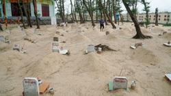 ẢNH: Nghĩa địa cá voi rộng 2.000m2