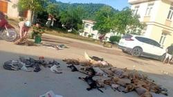 Thanh Hóa: Bắt giữ cặp tình nhân chuyên dùng chất độc Xyanua để trộm chó liên tỉnh