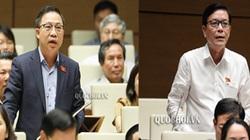"""Điều gì khiến hai ĐBQH tranh luận """"nảy lửa"""" về dự án khai thác vàng ở Phú Yên?"""