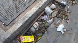 """Loạt khung chắn rác trên đại lộ nội đô đẹp nhất TPHCM bị """"bốc hơi"""""""