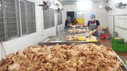 Giá gia cầm hôm nay 17/6: Giá gà trắng phía Nam tăng đột biến, vịt sắp đón đợt tăng giá mới?