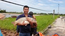 Nam Định: Thêm 1 anh kỹ sư bỏ lương 30 triệu về quê nuôi toàn cá khổng lồ, thu tiền tỷ