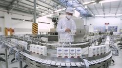 Cơ hội mới của Vinamilk khi được xuất khẩu sữa vào Liên minh Kinh tế Á Âu