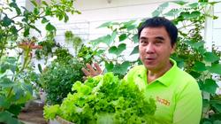 """Clip MC Quyền Linh gây """"sốt"""" khoe vườn rau xanh mát mắt trong biệt thự """"khủng"""""""