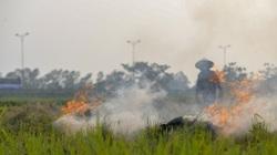 Nông dân lại đốt rơm rạ, khói 'bủa vây' đường cao tốc Hà Nội - Ninh Bình