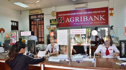 Agribank được bổ sung vốn điều lệ 3.500 tỷ đồng từ ngân sách