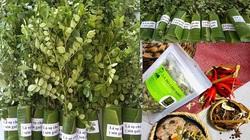 """""""Hô biến"""" sọ chó - loài cây mọc hoang thành đặc sản, 9X Quảng Ngãi bán gần triệu đồng mỗi kg"""