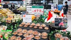 Tấn công thị trường ngoại, chinh phục thị trường nội, nông sản Việt ngoạn mục vượt Covid-19