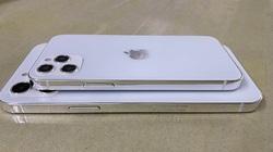 Lộ diện những hình ảnh mới nhất về iPhone 12