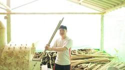 Cắm sổ đỏ vay tiền đầu tư trồng nấm, chàng kỹ sư mồ côi thu bạc tỷ