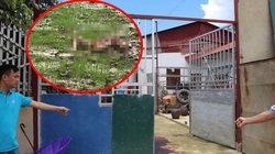 Thảm án 3 người chết ở Điện Biên: Nghi phạm chính đã chết, vụ án sẽ xử lý thế nào?