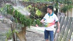 """Lạng Sơn: """"Đột nhập"""" vườn lan rừng 10.000 giò, có nhiều giò lan rừng quý hiếm"""