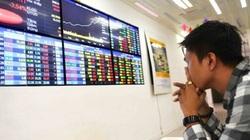 Tăng trưởng dựa vào nhà đầu tư cá nhân, TTCK VN tiềm ẩn rủi ro cao