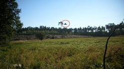 Người đàn ông đang đạp xe thì bất thình lình thấy UFO lơ lửng trên cánh rừng