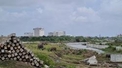 Hải Phòng: Dự án nghìn tỷ sau 10 năm vẫn hoang tàn, dang dở