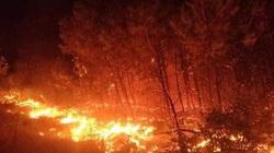 Cháy rừng Diễn Châu: Huy động hơn 1.000 người dập lửa