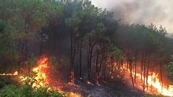 Rừng ở Nghệ An lại cháy dữ dội
