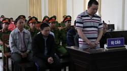 Táo tợn đầu độc 10ha rừng thông, 7 bị cáo lĩnh án hơn 32 năm tù