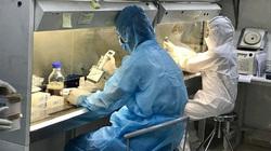 Nóng: Phát hiện ca dương tính nhẹ với Covid-19 tại Bệnh viện FV