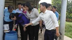 TP.HCM: 8 trường học chứa nguy cơ bùng phát sốt xuất huyết
