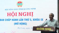 Hội Nông dân tỉnh Quảng Ninh hỗ trợ hơn 43 tỷ đồng cho 195 dự án phát triển sản xuất