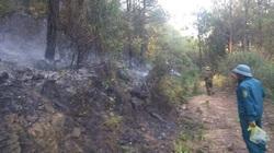 Cháy 4ha rừng ở Nghệ An: Lực lượng chức năng túc trực phòng đám cháy bùng phát trở lại