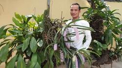 """Nam Định: Từng là """"gà mờ"""", không ngờ nay có vườn lan rừng khủng, có lan đột biến bán 4 triệu/cm"""