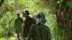 Dừng bay flycam, tập trung lực lượng tìm dấu vết Triệu Quân Sự trong rừng