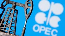 OPEC+ đồng ý gia hạn cắt giảm sản lượng dầu đến tháng 7
