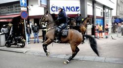 Chiêm ngưỡng các đội kỵ binh trên thế giới