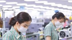 Doanh nghiệp Nhật 'mách nhau' gì về lao động Việt Nam?