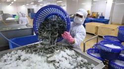"""Ngành thủy sản quyết """"kéo"""" mẻ cá 10 tỷ USD"""