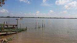 """Huyền thoại về loài """"cá nược thiêng"""" trên sông Mê Kông"""