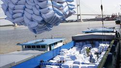 EU công bố hạn ngạch nhập khẩu nông sản và gạo Việt Nam