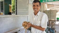 Quảng Nam: Nhặt thứ bỏ ngoài đồng mang về làm ra hàng trăm triệu