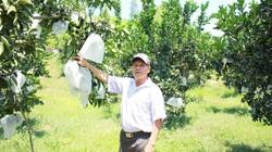 """Nghệ An: Trang trại """"khủng"""" đầy cây trái của một nông dân cho thu nhập 1 tỷ đồng"""