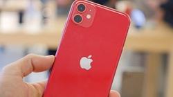iPhone 11 giảm giá mạnh, liệu có nên mua bây giờ?
