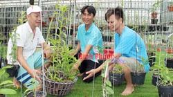 Nhiều giò lan rừng đột biến tiền tỷ của một tay chơi thứ thiệt đất Bình Phước