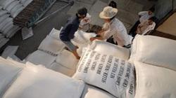 Hạn ngạch xuất khẩu gạo vào EU không quá 80.000 tấn/năm