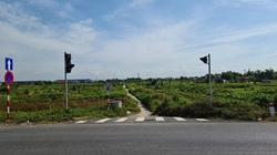 Đường World Bank Hải Phòng: Làm cả đèn báo tín hiệu giao thông lối ra cánh đồng