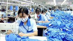 Thủ tướng đồng ý hạ tiêu chí cho doanh nghiệp vay gói 16.000 tỷ trả lương