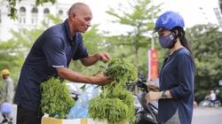 """Đặc sản rau rừng """"bò khai Tây Bắc"""" đổ về Hà Nội, 50.000 đồng/bó vẫn hút khách"""