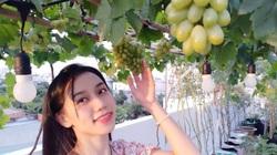 Hot girl Sài thành chia sẻ kinh nghiệm trồng nho trên sân thượng thu hoạch mỏi tay