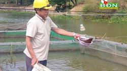 """Đắk Nông: """"Liều"""" thuần hoá, nuôi cá lăng đuôi đỏ ở dòng sông chảy ngược, bất ngờ thu 1/2 tỷ mỗi năm"""
